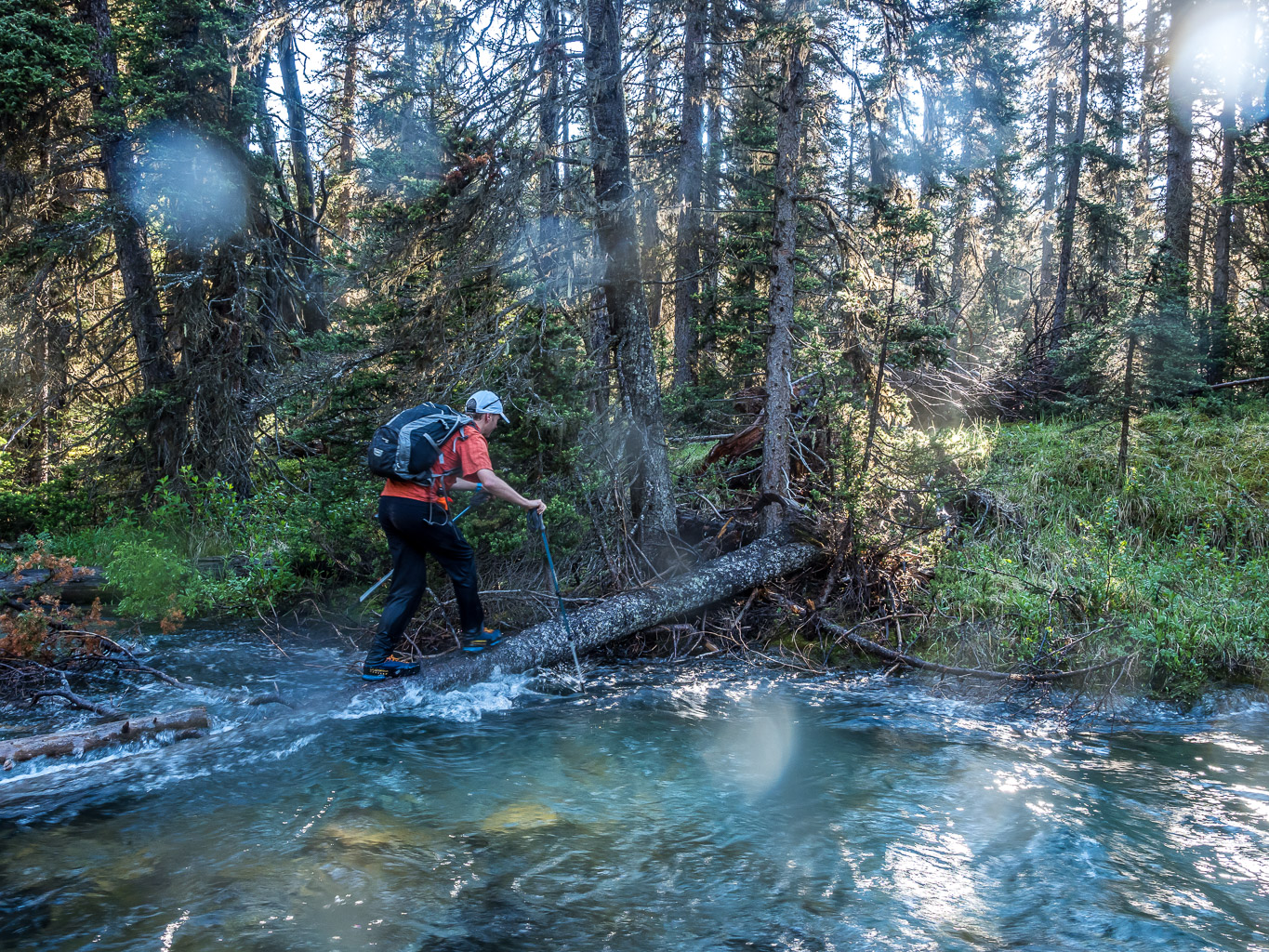 Our escape across Currie Creek. Right where Phil is the water was deeper than my 120cm poles could reach. And that log is slick too BTW. We found a much safer crossing upstream on return.