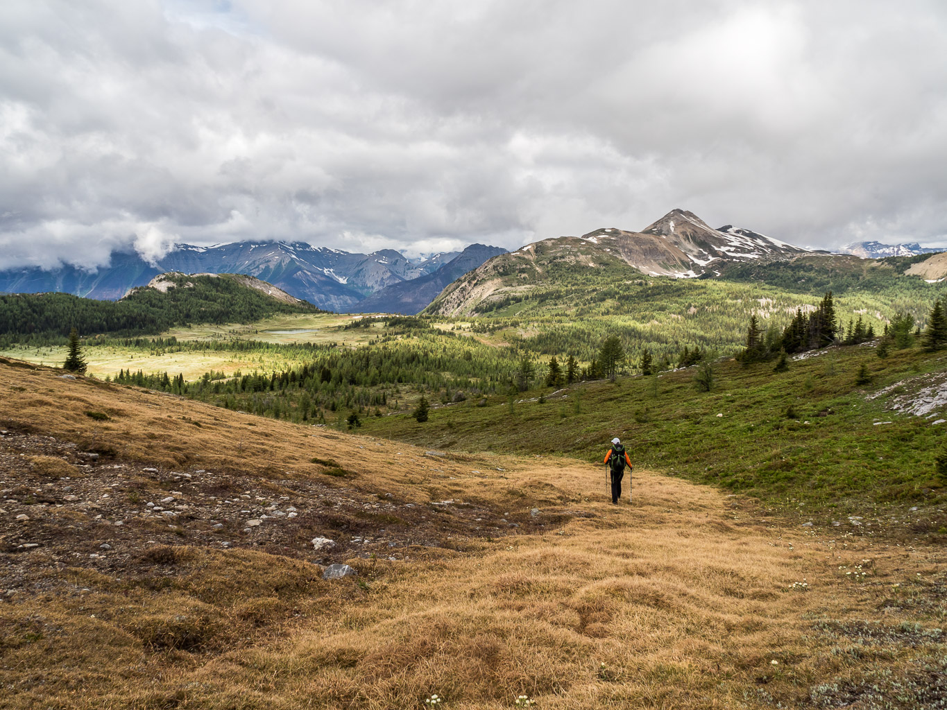 Hiking back across the alpine meadows to the main trail which is left of us here.